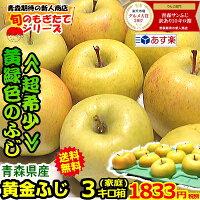 青森りんご黄金ふじ3キロ箱送料無料