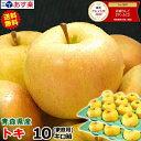 【あす楽】送料無料 超希少のトキ!青森 りんご 家庭用 トキ