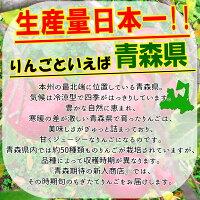生産量日本一の青森りんご