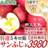青森県産りんごサンふじ蜜入り完熟5キロ箱送料無料