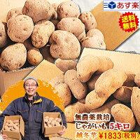 じゃがいも5kg送料無料無農薬栽培越冬ジャガイモ