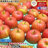 青森りんご小玉サンふじ10キロ箱