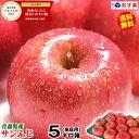 あす楽【送料無料】青森りんご ご家庭用 サンふじ 5キロ箱り