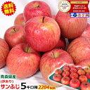 【送料無料】青森 りんご 訳あり 5キロ箱 サンふじリンゴ ...