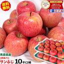 【送料無料】青森 りんご 訳あり 10キロ箱 サンふじリンゴ...
