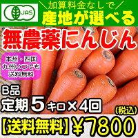 【定期購入】産地が選べる無農薬にんじんB品5キロ×4回(計20キロ)