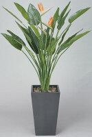 【送料無料】《アートグリーン》《人工観葉植物》光触媒光の楽園ストレチア花付1.6
