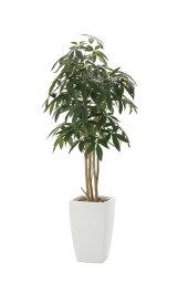 【送料無料・ポイント10倍】《アートグリーン》《人工観葉植物》光触媒 光の楽園 アーバンパキラ1.8
