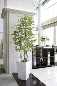 【送料無料】《アートグリーン》《人工観葉植物》光触媒光の楽園アーバンゴールデンリーフ1.8
