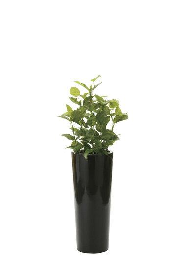 【送料無料・ポイント10倍】《アートグリーン》《人工観葉植物》光触媒 光の楽園 ポトス1.4:JUSTJAPAN