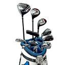 ワールドイーグル F-01αクロスモデル メンズ14点ゴルフクラブフルセット 左用 CBX005バッグ【初心者 初級者 ビギナー】【ssclst】【あす楽】