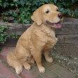 犬の置物 大型ラブラドールレトリバーB N12237 いぬ イヌ 動物 オーナメント ガーデン インテリア 雑貨 置物 庭 ガーデンマスコット
