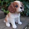 犬の置物 キャバリア 子犬 63QY いぬ イヌ 動物 オーナメント ガーデン インテリア 雑貨 置物 庭 ガーデンマスコット 雑貨小物 ディスプレィ 陶器 リアル