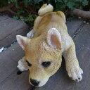 犬の置物 柴犬 伏せ柴 いぬ イヌ 動物 N12920 オーナメント ガーデン オブジェ 庭 雑貨 ガーデニング ガーデンマスコット リアル ディスプレィ