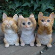 猫の置物 茶トラの子猫 見ざる言わざる聞かざる3品セット 6113H キャット ガーデンオブジェ CAT 動物 オーナメント ネコ 雑貨 ガーデン オブジェ ガーデニング インテリア マスコット アニマル リアル ディスプレィ ねこ グッズ