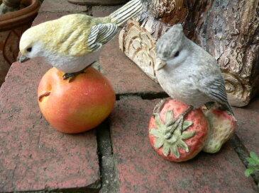 小鳥の置物 森の仲間たち フルーツバード4羽セット とり トリ N11114 鳥 動物 オーナメント オブジェ 庭 ガーデン 雑貨 インテリア リアル ディスプレィ