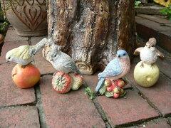 先日、本物の小鳥が並んで日向ぼっこをしてました。 小鳥の置物 森の仲間たち フルーツバー...