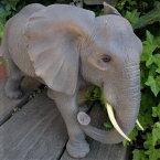 ぞうの置物ゾウ象エレファント6442HT動物置物玄関オブジェガーデンオーナメントガーデニングガーデンオブジェアニマルリアル庭
