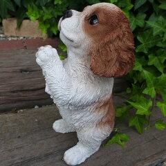 犬の置物 キャバリアのお願い 102QY いぬ イヌ 動物 オーナメント ガーデン インテリア 雑貨 置物 庭 ガーデンマスコット 雑貨小物 ディスプレィ 陶器 リアル[わくわくガーデン]