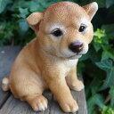犬の置物 柴犬 おすわり豆柴 1400QYL いぬ イヌ 動物 オーナ...