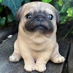 犬の置物ファットパグお座り1582QYLいぬイヌ動物オーナメントガーデンインテリア雑貨置物庭ガーデンマスコット雑貨小物ディスプレィ陶器リアル