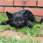 猫の置物興味津々の子猫黒猫BK115QYクロネコキャットガーデンオブジェCAT動物オーナメントネコ雑貨ガーデンオブジェガーデニングインテリアマスコットアニマルリアルディスプレィねこグッズ