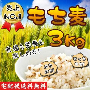 【バーゲンセール】送料無料♪ ★韓国産 もち麦 3Kg★ もちもち ぷちぷち 栄養 健康 韓国食材 麦 モチ麦 ダイエット ご飯 植物繊維 もち麦ごはん もちむぎ お米
