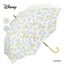 Wpc. ディズニー 長傘 アリス マーガレット Disney傘 撥水 はっ水 雨傘 晴雨兼用 レディース 女性 雨 おしゃれ ふしぎの国のアリス プリンセス 花 フラワー
