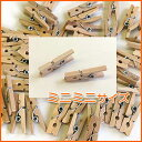 ウッドクリップミニミニサイズ:SS:50個パック♪木製洗濯ばさみ・ウッ...