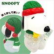 クリスマスお菓子スヌーピークリスマスセービングバンクbニット帽