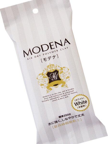 パジコ 樹脂粘土 モデナ 250g