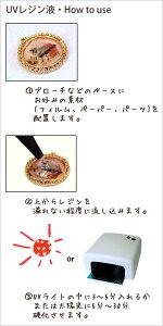 【KIYOHARA】レジンクラフトUVクラフトレジン液(紫外線硬化樹脂液)UVR55G(55g)×2本セット