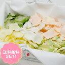フラワーシャワー フラワーペタル セット 造花 アートフラワー 花びら フレッシュネスグリーン(5色・8袋入り)
