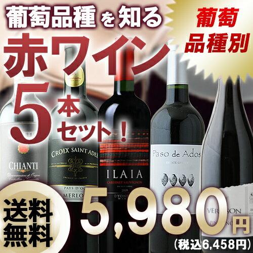 葡萄品種を知る赤ワイン5本セット 第8弾 送料無料 赤ワインセット 【送料無料...