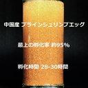 中国産ブラインシュリンプエッグ 大卵 孵化率95% 20g BISHOKU