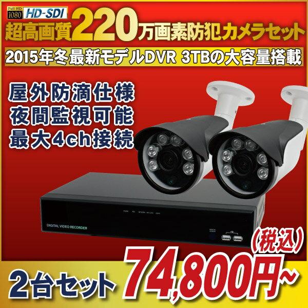 【最前線モデル!】220万画素HD-SDIカメラと高機能なHD-SDI録画機のフルセット! 【官公庁/銀行様納入実績】4chデジタルレコーダー1080p対応 [録画機1台 HDD容量1TB]・防滴仕様 夜間監視可能な赤外線LED搭載 [HD-SDIカメラ2台]セット【5H321-1TB/HR271/AD121/HA3C】:防犯カメラの塚本無線
