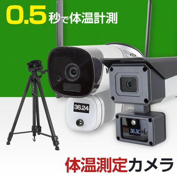防犯カメラ, 防犯カメラ単体  WTW