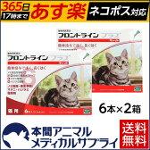 【送料無料】猫用 フロントラインプラス 2箱 12本入 12ピペット【動物用医薬品】
