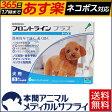 【送料無料】犬用 フロントラインプラス S (5-10kg未満用) 1箱 6本入 6ピペット【動物用医薬品】【365日あす楽】