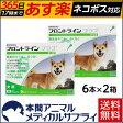 【送料無料】犬用 フロントラインプラス M (10kg〜20kg) 2箱 12本入 12ピペット【動物用医薬品】【365日あす楽】