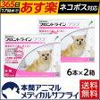 【送料無料】犬用 フロントラインプラス XS (5kg未満用) 2箱 12本入 12ピペット【動物用医薬品】【365日あす楽】