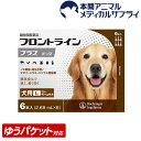 【メール便送料無料】犬用 フロントラインプラス L (20kg〜40kg) 1箱 6本入 6ピペット【動物用医薬品】【d_frnt】【1903_flp】・・・