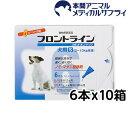 【最大350円OFFクーポン!】【送料無料】犬用 フロントラインスポッ...