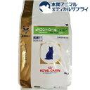 ロイヤルカナン 猫用 pHコントロール1 フィッシュテイスト ドライ(4kg)【2shwwpc】【ロイヤルカナン(ROYAL CANIN)】