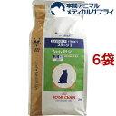 ロイヤルカナン 猫用 ベッツプラン エイジングケア ステージI(2kg*6袋セット)【ロイヤルカナン療法食】[キャットフード] 1