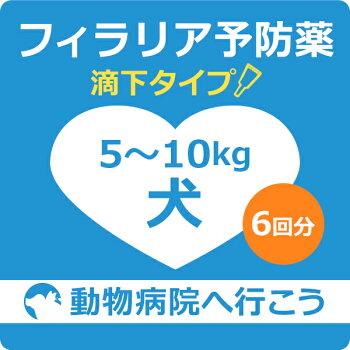 犬フィラリア予防薬滴下タイプ6回分(体重5.0kg以上10.0kg未満の犬)【動物病院へ行こう!】【診療・処方代】