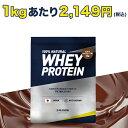 【シェイカーセット】 プロテイン アルプロン ホエイ WPC 1kg 50食分 チョコレート 送料無料