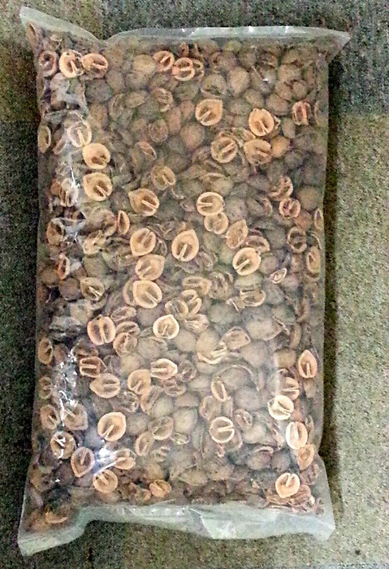 くるみのカラ10L 新販売規格:ハーフカット内容量:10L(約3.4-3.6kg)【一部地域送料無料】北海道・九州・離島は別途送料かかります。約200gで直径20cmのプランターの表面土が隠れます。