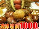【送料無料】甘栗1キロ発送当日の炒り立ての甘栗だけをお届け中♪横浜中華街のお土産にも大変喜ばれています。【楽ギフ_包装】【RCP】10P05Sep15