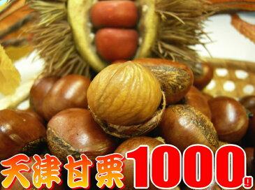 送料無料の甘栗1キロ発送当日の炒り立ての甘栗だけをお届け中♪横浜中華街のお土産にも大変喜ばれています。【楽ギフ_包装】【RCP】※ただいまの出荷分は日時のご指定不可となります